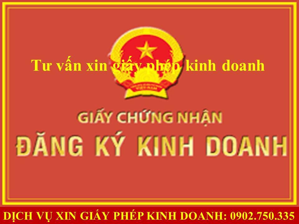 Dich vu làm giay phep kinh doanh tai Quang Nam Da Nang
